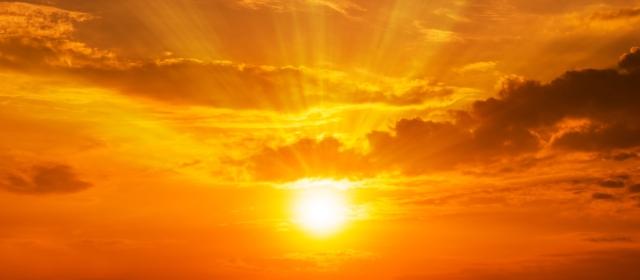 living sun